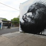 ROA New Murals In Melbourne, Australia (Part II)