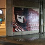 Shepard Fairey New Street Pieces In Chicago