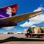 POW! WOW! paints Hawaiian Airlines ground service vehicles in Honolulu