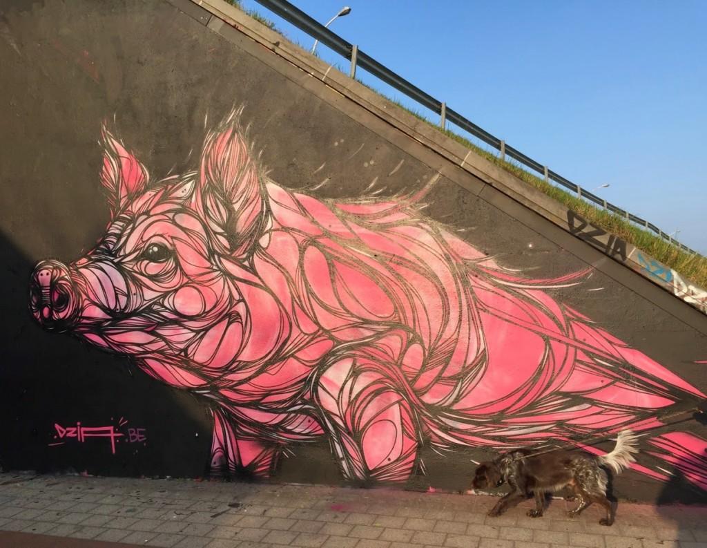 DZIA creates a new mural in Duffel, Belgium