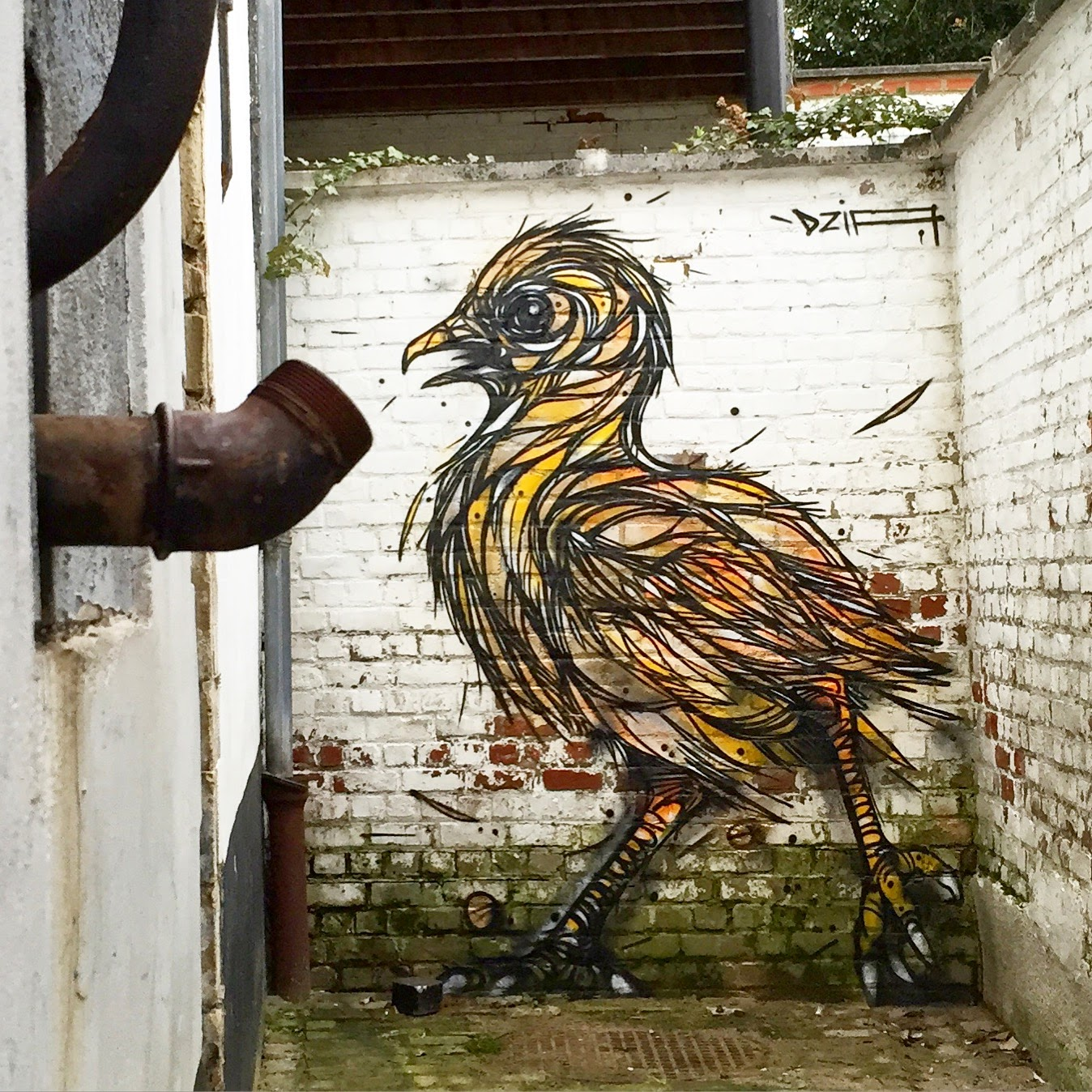 "DZIA paints ""Chick"", a brand new piece in Wavre, Belgium"