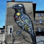 ROA New Murals In Katowice, Poland