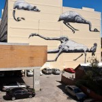 Roa New Mural In Perth, Australia