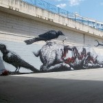 ROA New Mural In Campobasso, Italy