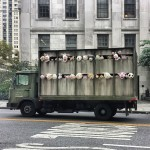 "Banksy ""Stuffed Animals"" New Truck Installation For ""Better Out Than In"" Uncovered Early In New York City?"