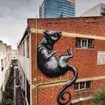 ROA New Mural – Perth, Australia (Part II)