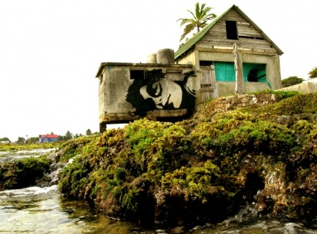 Stinkfish New Street Pieces In San Andrés Island, Colombia