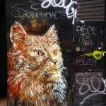 C215 New Street Pieces – Barcelona, Spain