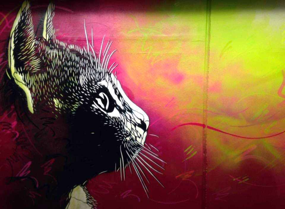 Stunning Urban Art Graffiti Art likewise T1602 C215 Street Artist additionally C215 New Pieces Ulstein Bergen Norway additionally C215 Street Art Slave Island also Palermo Viejo Vintage Cars 14. on street art by french artist c215