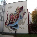 "Nychos ""Anatomy of a Snakebait / Rat"" New Street Art – Vienna, Austria"