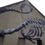 ROA Work In Progress – Christchurch, New Zealand
