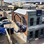 ROA Work In Progress – Dunedin, New Zealand