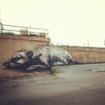 ROA New Mural In Chicago, USA