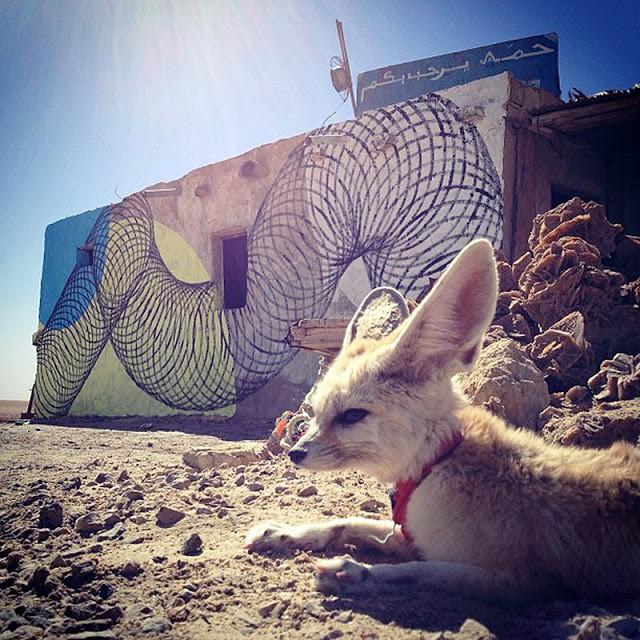 Moneyless New Mural In Chott El Jerid, Tunisia