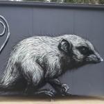 ROA New Murals In Healesville, Australia