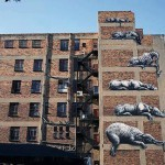 ROA New Mural In Johannesburg, South Africa