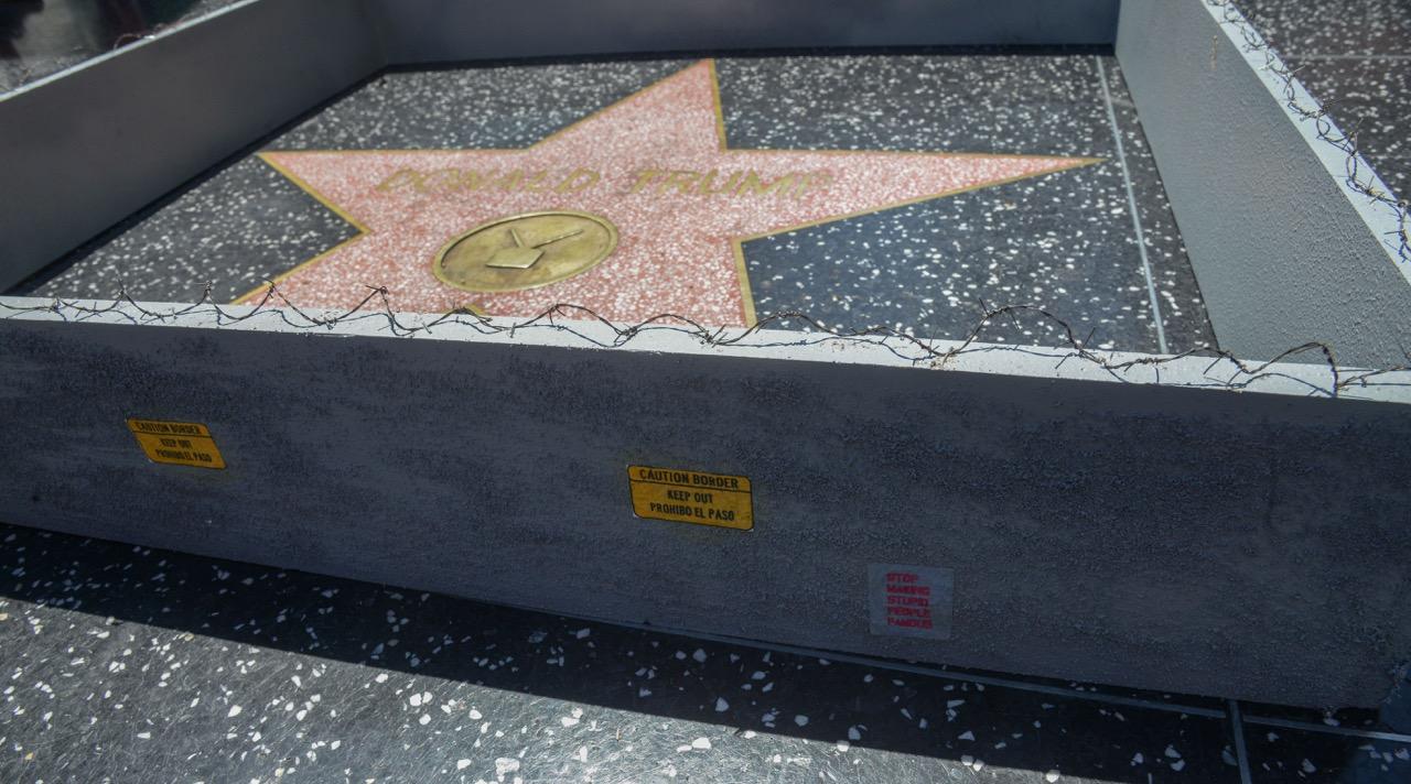PJ Trump wall walk of fame-1