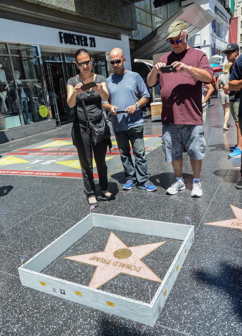 PJ Trump wall walk of fame-10