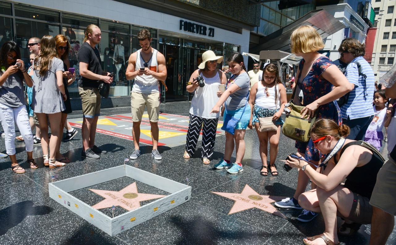 PJ Trump wall walk of fame-13