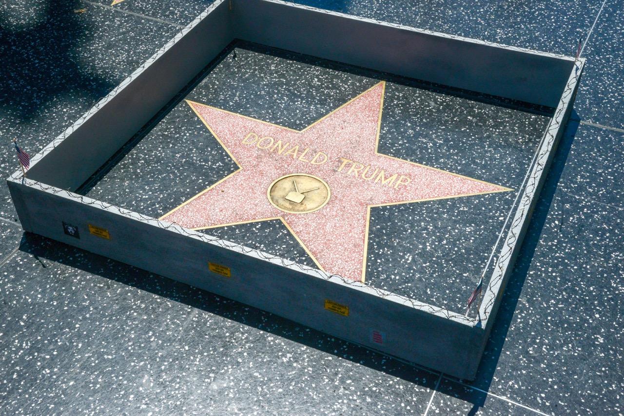 PJ Trump wall walk of fame-2