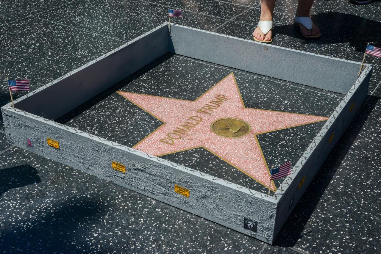PJ Trump wall walk of fame-3