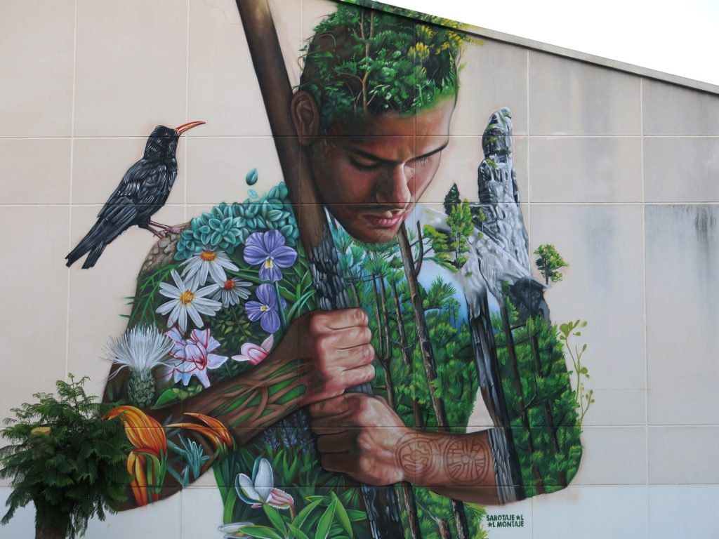 """Tanausu"" by Sabotaje Al Montaje in La Palma, Spain"