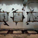 "Video: Borondo ""Animal"" Exhibition Recap @ London's RexRomae"