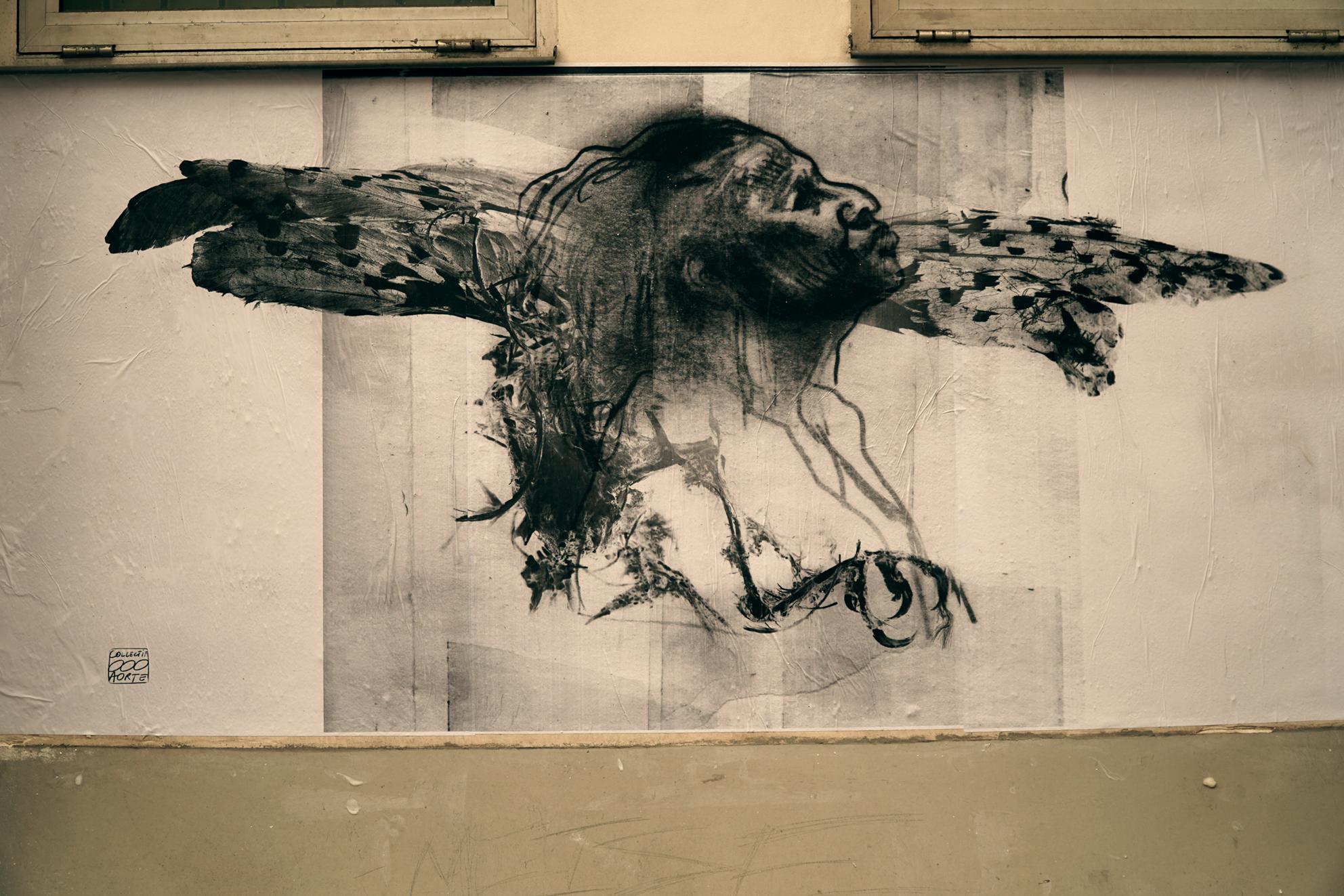 Le roi des oiseaux by michel lauricella and jean dominique for Oiseaux de france