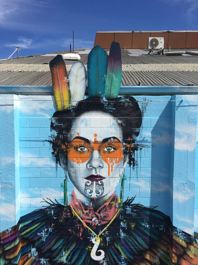 Fin DAC in Mount Maunganui & Christchurch, New Zealand
