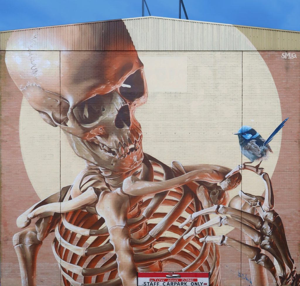 Smug for The Big Picture Fest in Frankston, Australia