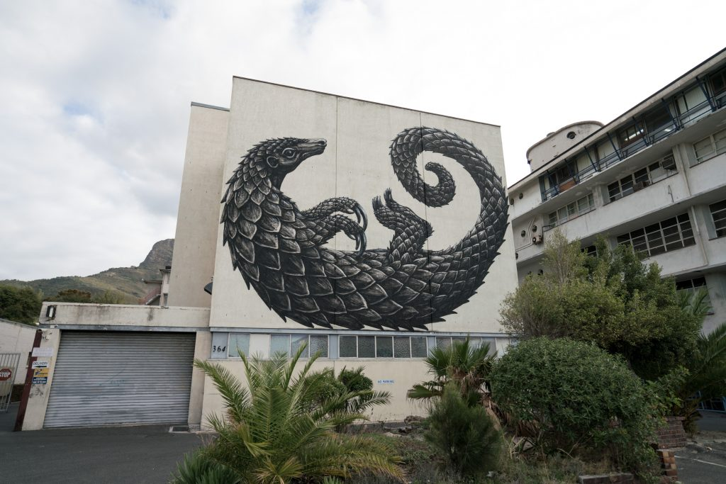 ROA's Pangolin in Cape Town