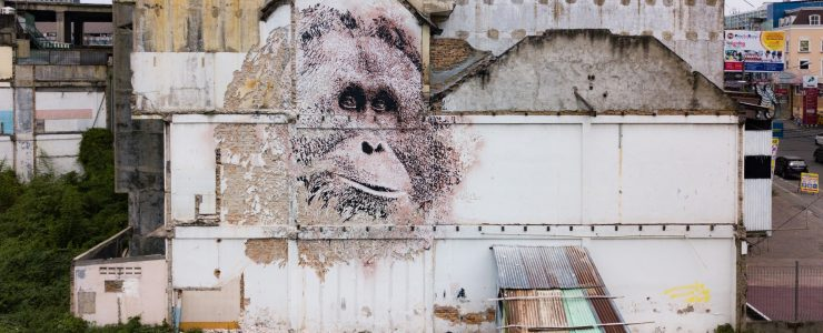 Vhils' Orangutan in Indonesia for Splash and Burn