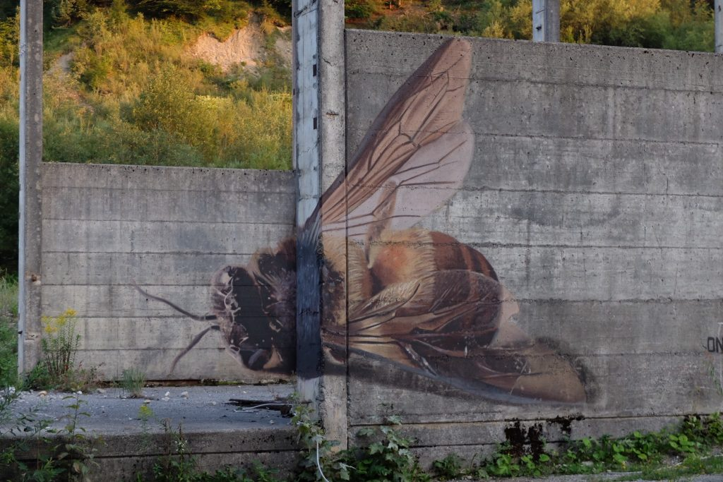 """More Than Honey"" By Onur In Austria"