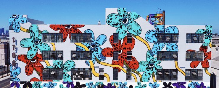 """Flower Fields"" by Drew Visuals in Los Angeles"