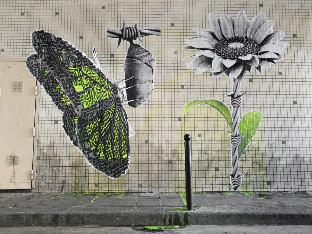 """Ephemera"" & ""Swallow"" by Ludo in Paris, France"