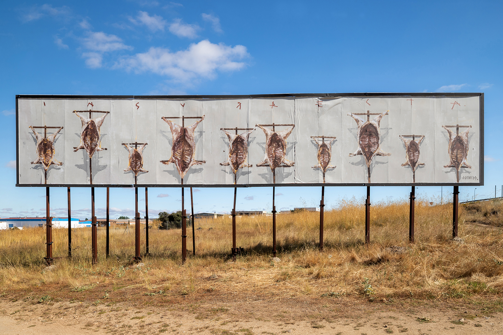 Insurrecta de Gonzalo Borondo, nos Outdoors de Segóvia